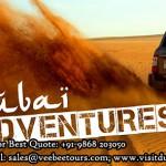 Dubai Adventures from Delhi