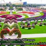 Miracle Graden in Dubai from Delhi
